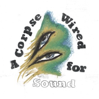 'A Corpse Wired For Sound' by Merchandise, album review by Jake Fox