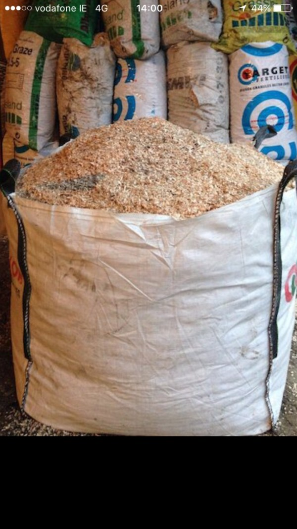 Dry Sawdust for Bedding