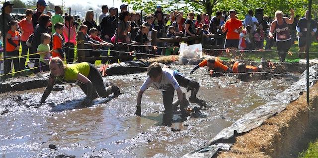 survival race 4-h camp riverhead obstacles