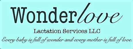 WonderLove Lacation Services LLC