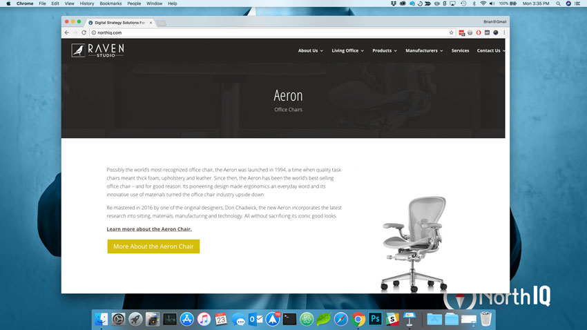 Aeron Chair - Raven Studio