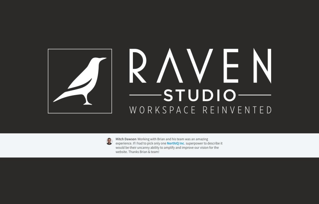Raven Studio - Quote from Mitch Dawson