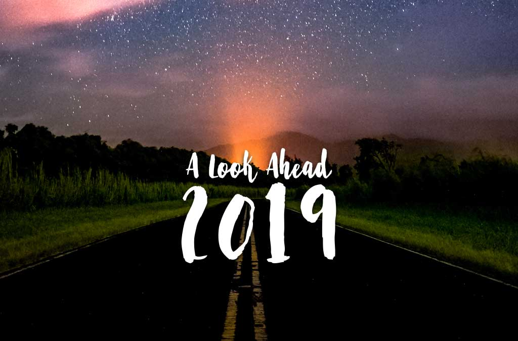 The NorthIQ Look Ahead at 2019