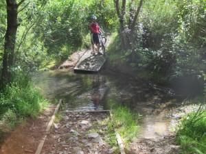 Plenty of shallow stream crossings at Hunua