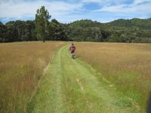 Riding through paddocks