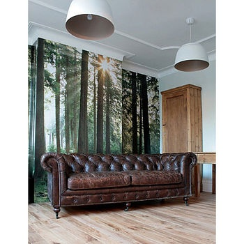 Forest Photograph - http://www.notonthehighstreet.com/rosegreyinteriors/product/vintage_leather_three_seater_chesterfield
