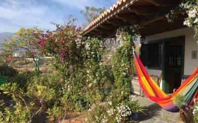 La Casa Lagarto, Toque, La Palma