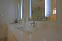coryshousewashroom_02