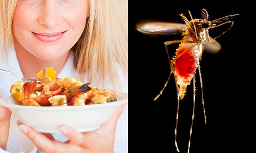 anti-mosquito-diet