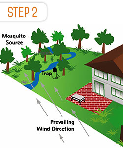 step-2-mosquito-control