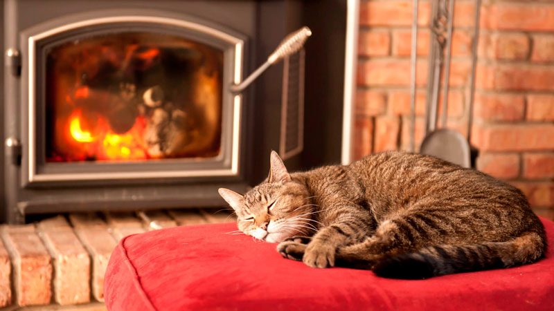 Tips to Burn Wood with Safety and Efficiency this Heating Season