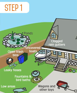step-1-mosquito-control