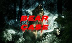 The Bear Case