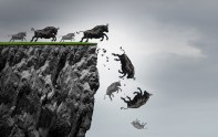 The Bull Cliff – NorthmanTrader