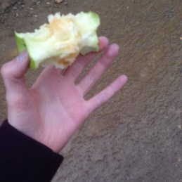apple + blue hands + one of Ukhta's cleanest sidewalks