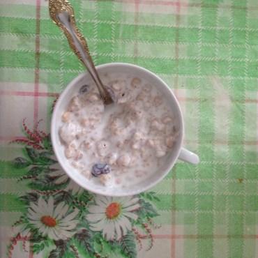 granola and yogurt!