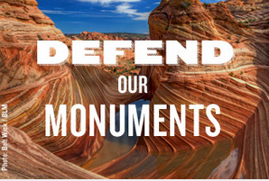 Defend our Monuments