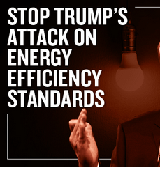 Stop Energy Efficiency Attacks