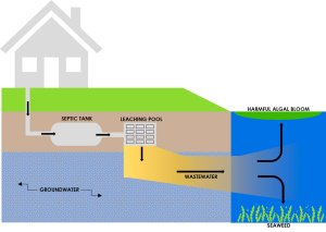 Water Quality Improvement Program _Conventional Septic System