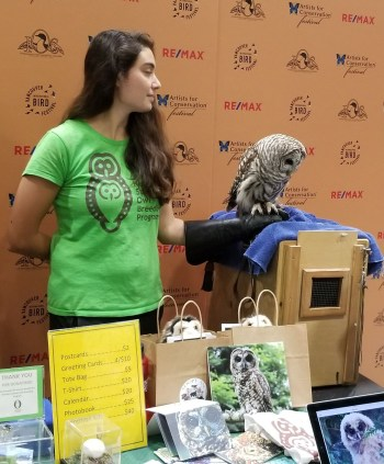 Real Owl at Vancouver Bird Festival