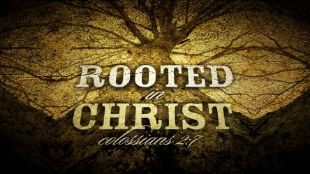 Rooted in Christ Title Slide