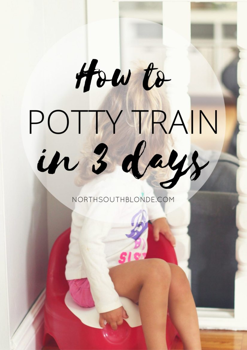 How to successfully potty train your toddler in three days. A step-by-step guide included, and tips and tricks that are guaranteed to work! Motherhood | Parenting | Toddlers | Potty Training | Tips | Potty Train | How to Potty Train | Pull-ups | Potty Training Books | What Age to Start Potty Training | Potty Training at Night | Babies | Raising Girls | Parenthood | Mommy Blogger | Potty Tips | Toddler Activities | Parenting Hacks |