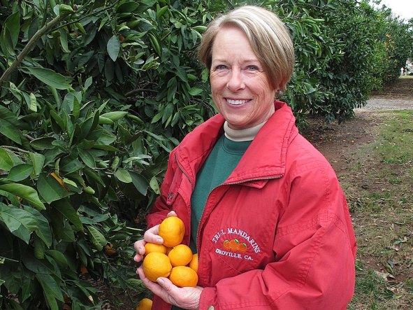 "Lola Lodigiani, along with her husband and business partner Lou Lodigiani (known as ""Farmer Lou"" to many), loves working the land and bringing to harvest the best mandarins for taste, quality and sweetness. ""It's the love of serving our customers and the kids at school that gives us the energy every year to keep giving back to nature what nature gives to us,"" she says."