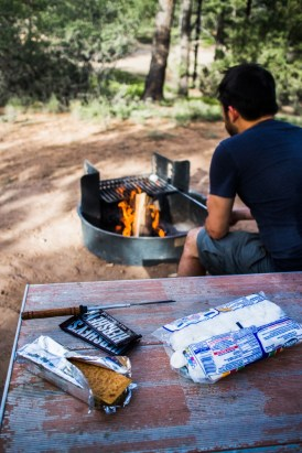 Making s'mores on northtosouth.us