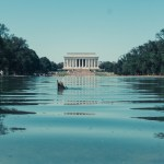 North to South U.S. road trip recap week eighteen | Lincoln Memorial Reflecting Pool duck