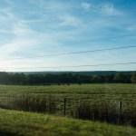 U.S. Road Trip Re-Cap: Week Nineteen -- green pastures in West Virginia