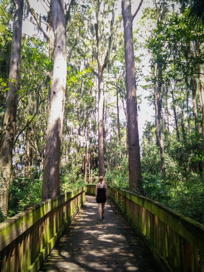 Anderson Park, Florida