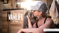 A Day in the VanLife of Tiger: The Importance of Routine