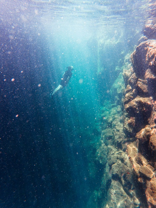 Ian free-diving in the Las Grietas lagoons on Santa Cruz Island