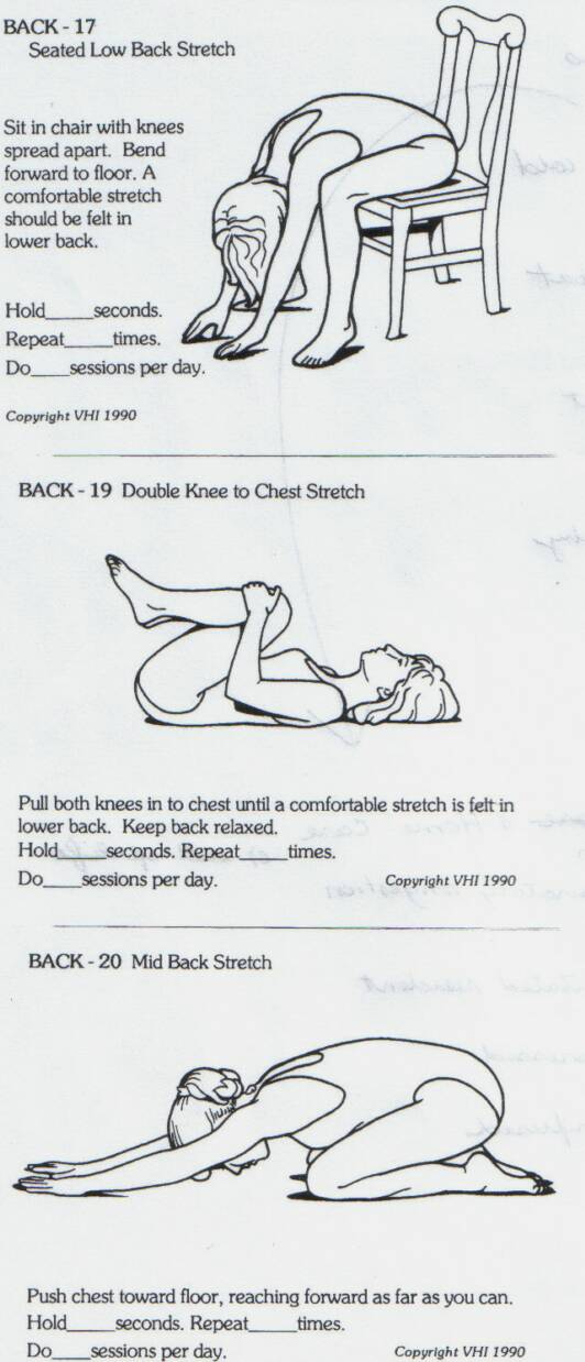 Back Strengthening Exercises: Books On Back Strengthening