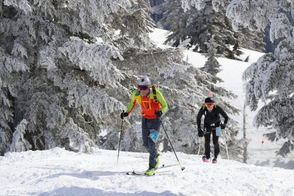 Competitors use skins to climb wearing their skis during the 2018 Vertfest. Credit: Karter Raich