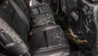 Get Mold Smell Out Of Car Carpet - Carpet Vidalondon