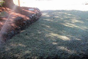 new lawn kitsap county