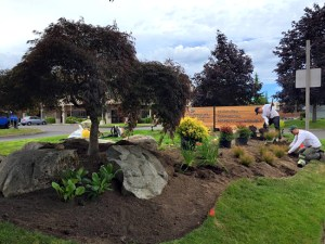 Silverdale landscaping