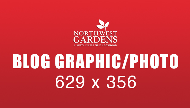 NWGBlogGraphic_629x356