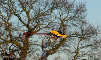 Clive's Raptor 50 in a Trex canopy