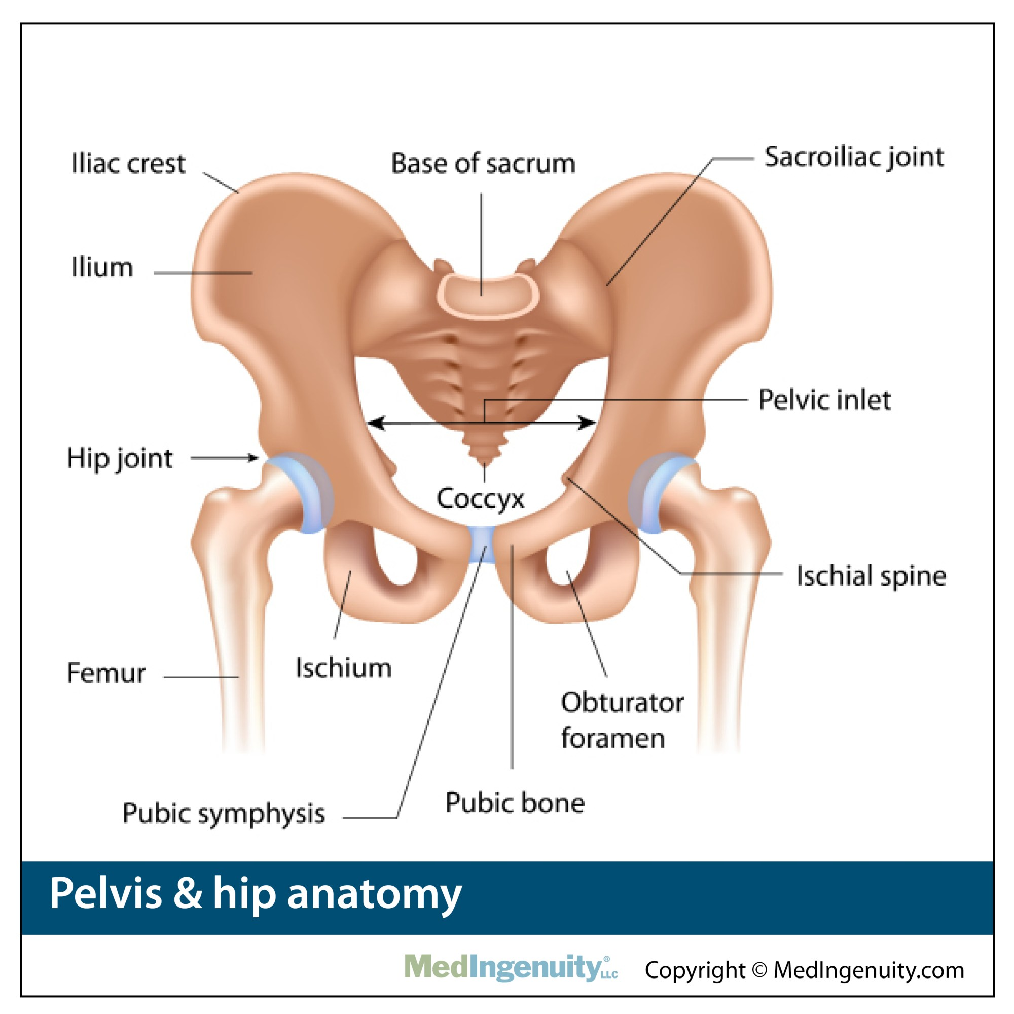 hight resolution of hip pain
