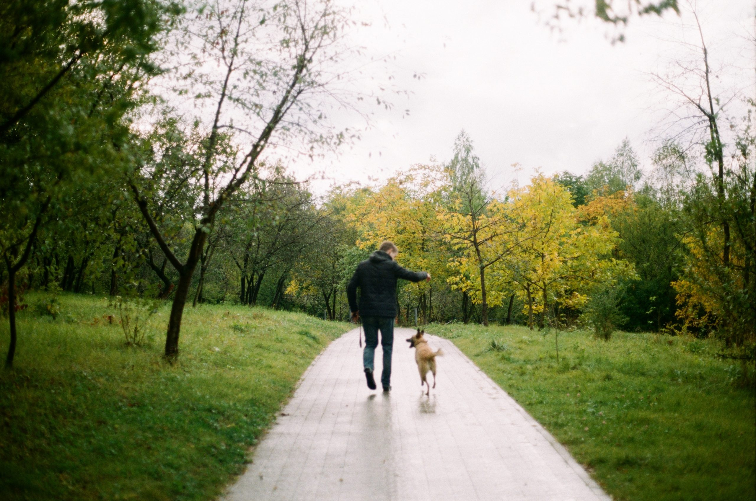 "a person who asked ""can you walk after bunion surgery"" walks with his dog in a park"