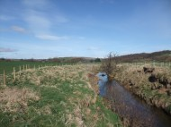 Esk at Danby - bank side fencing and wide buffer strips.
