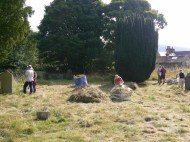 Many bags of grass were moved off site