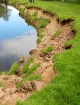 River Esk, sharp bend site - before (June 2013). Copyright Wild Trout Trust.