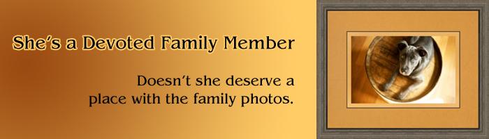 Frame A Family Member