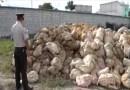 9 toneladas de material minero decomisó la policía en el Ángel
