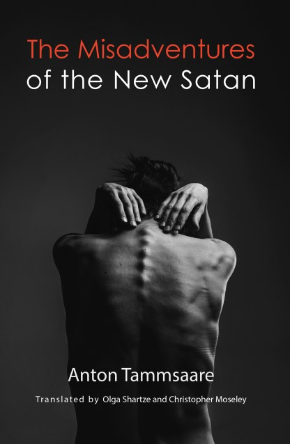 Book cover Misadventures of the New Satan
