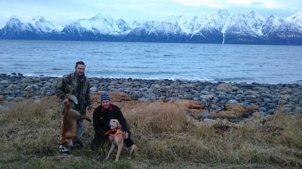 Bilde av Tommy Enger og Henrik Karlsson med russerstøveren Tikka på Uløya etter å ha skutt en stor hanrev.