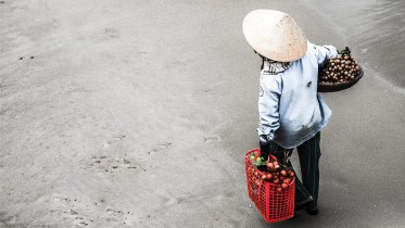Farm Vietnam Human Trafficking